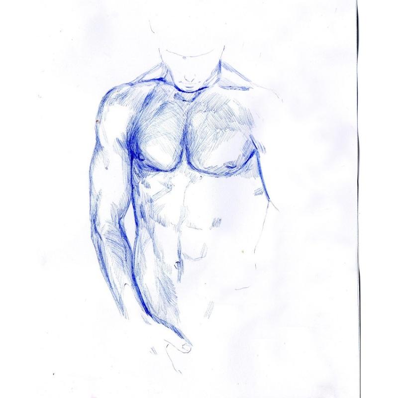 850 torso